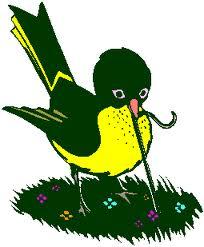 birdpulling