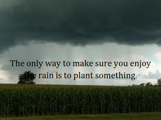 corn with rain with words