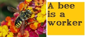 bee with words