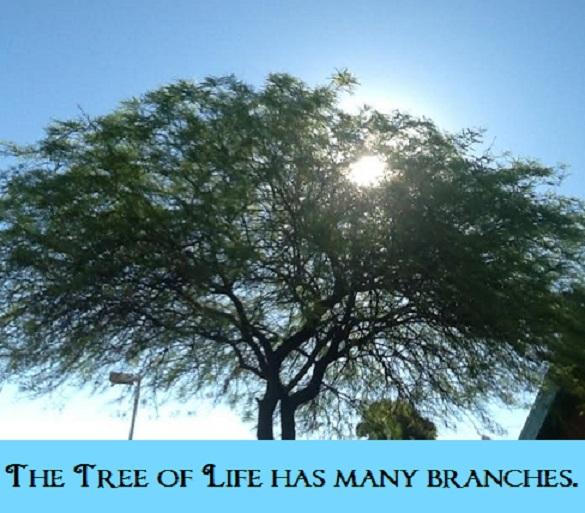 jon's shining tree with words