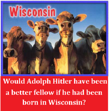 Wisconsin cows with words