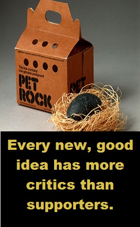 pet rock with words