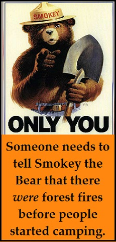 Smokey the Bear with words