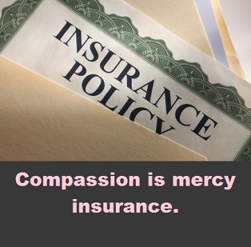 insurance policy with words