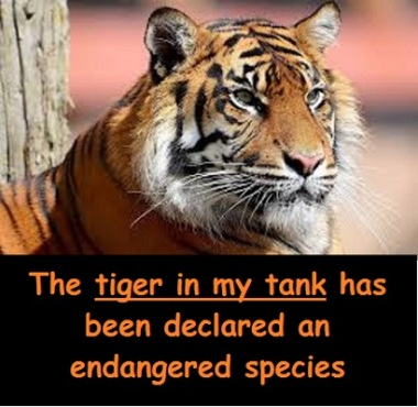 tiger with words
