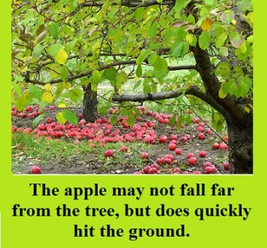 apple-tree-no-apples-with-words