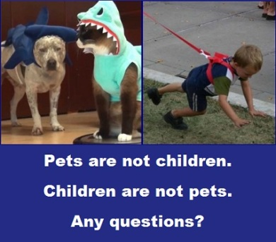 pets-and-children-with-words