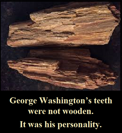 George washington's teetn
