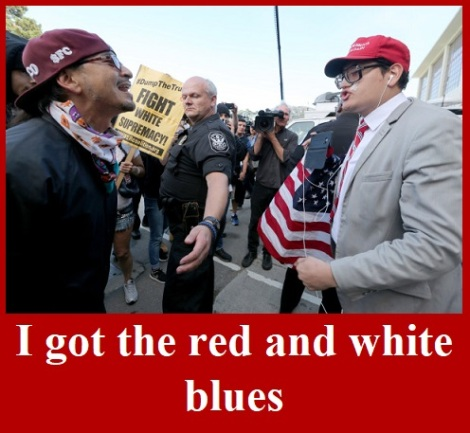 Maga demonstrators